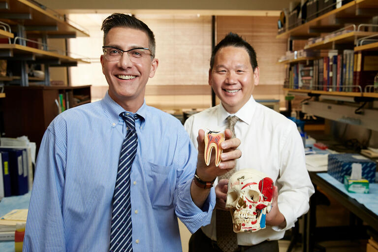 Dr. Karl Kingsley and Dr. James Mah hold a model of a tooth.