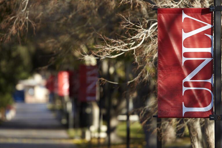 U-N-L-V banner hanging on a light pole.