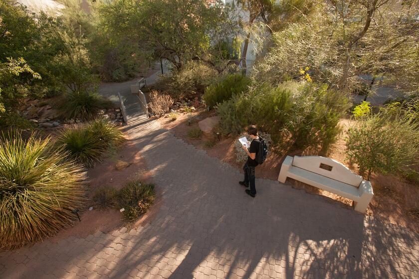 Student walks through Donald H. Baepler Xeric Garden